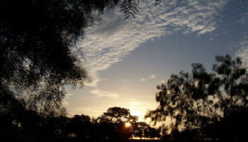 Files Family Farm Sunrise