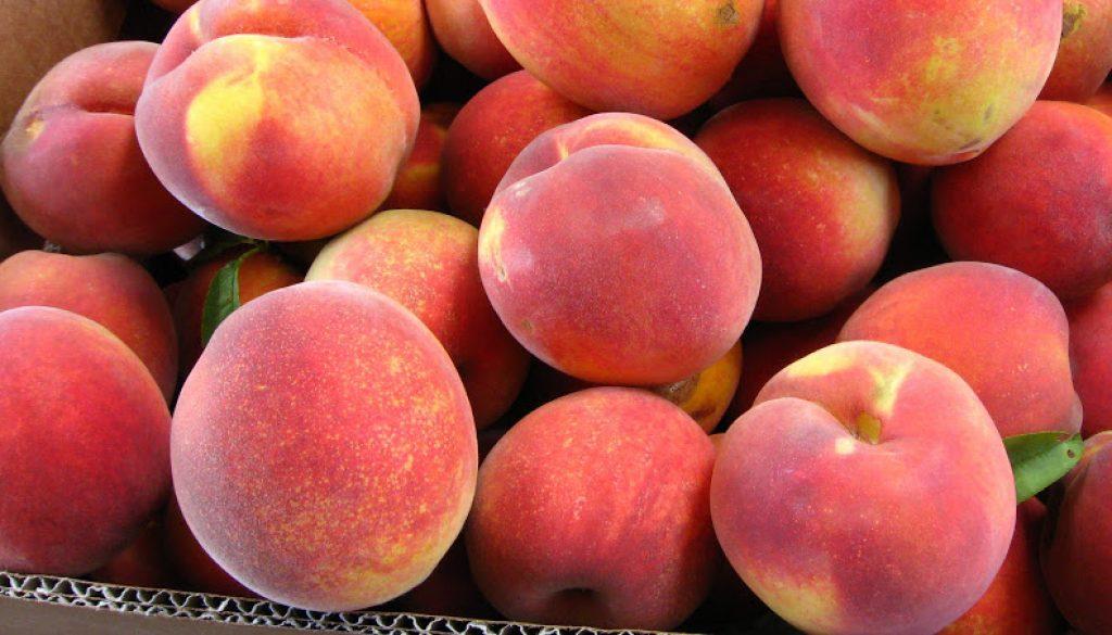 Files Family Farm Freestone Peaches