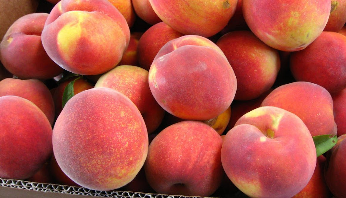 Files Family Farm Freestone Peaches
