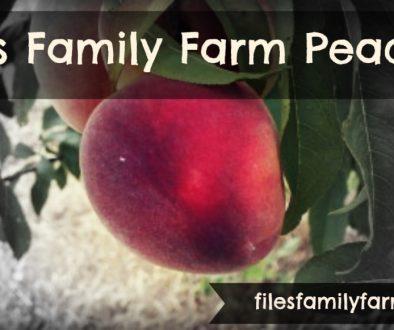 Files Family Farm Peaches